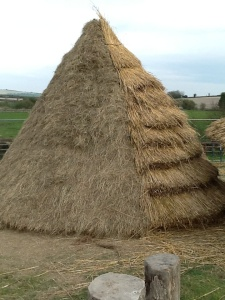 Another two different thatching methods on building 848.